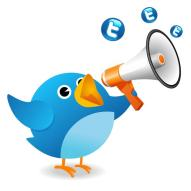 tweet bird with megaphone