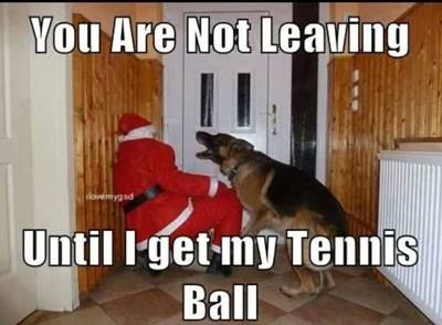 14. not leaving unless tennis ball