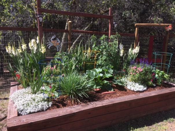 garden, main 6-18-20