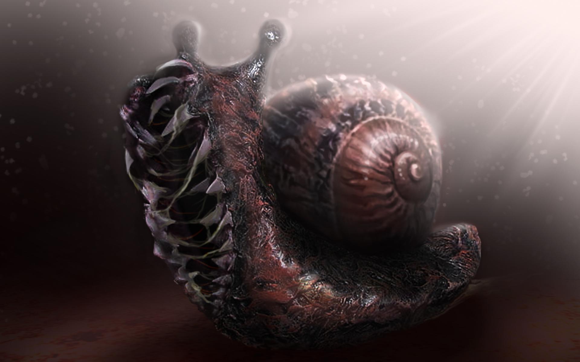 Clyde snail